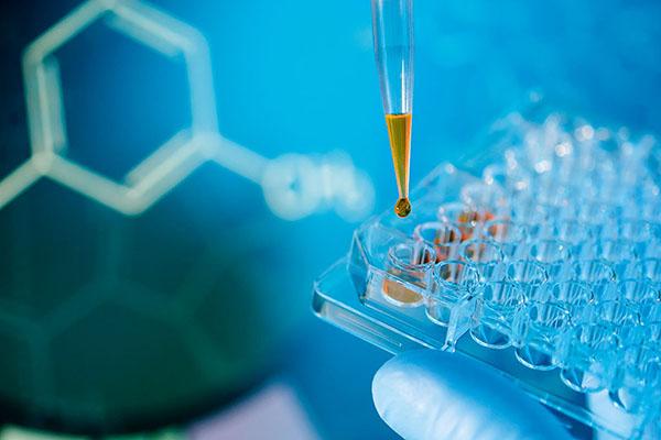 DMPK- in vitro