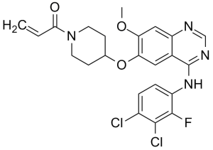 Good Quality Raw Material Aminophylline - Poziotinib – Caeruleum
